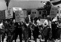 Linus Pauling and his wife participating in a peace march in Los Angeles