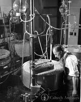 Henry Borsook with Warburg respiration apparatus