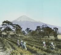 Japan, rural scene form the 1920s